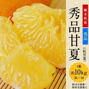 【10kg】秀品 甘夏みかん 熊本県産