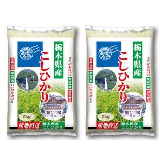 【計10kg(5kg×2袋)】令和2年産 栃木県産コシヒカリ