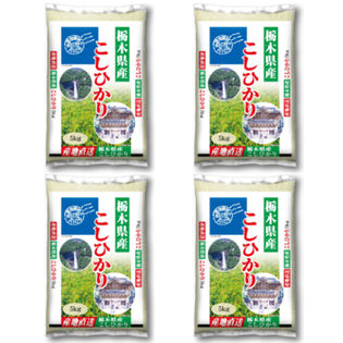 【計20kg(5kg×4袋)】令和2年産 栃木県産コシヒカリ