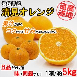 【5kgセット】 果汁が多く甘いみかん 清見オレンジ (季節限定商品) 産地直送でお届け