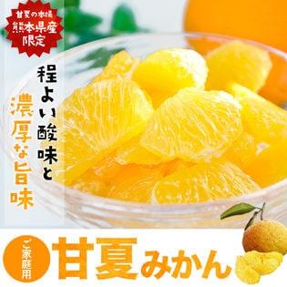 【1.5kg】甘夏みかん 熊本県産限定!※ご家庭用