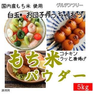 【5kg】 微粉 国内産 もち米パウダー 5kgx1袋 -平均粒度50ミクロン