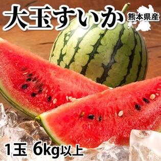 【予約受付】6/15~順次出荷【1玉 6kg以上】熊本県産 大玉すいか(ご家庭用・傷あり)