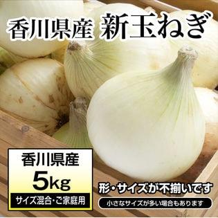 【約5kg(サイズ混合・ご家庭用)】新たまねぎ 香川県産 旬の採れたて新玉ねぎをお届け