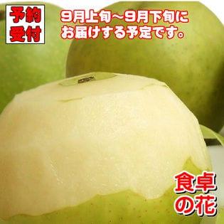 【予約受付】9/6~順次出荷【5kg/12-20玉】20世紀梨