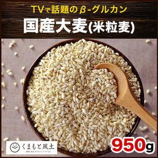 【950g】国産大麦 (米粒麦)