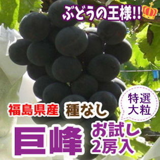 【2房入】福島県産 巨峰(種なし)お試し