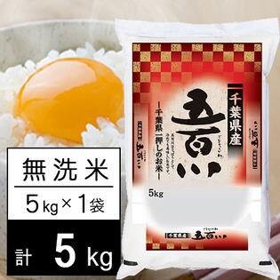 【5kg】 令和3年産 千葉県産 五百川 無洗米 5kgx1袋