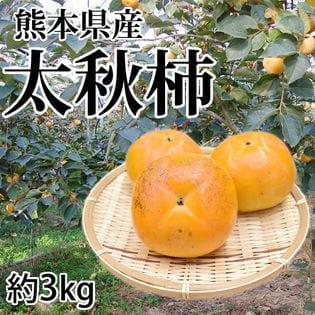 【予約受付】10/26~順次出荷【約3kg】熊本県産 太秋柿(ご家庭用・傷あり)