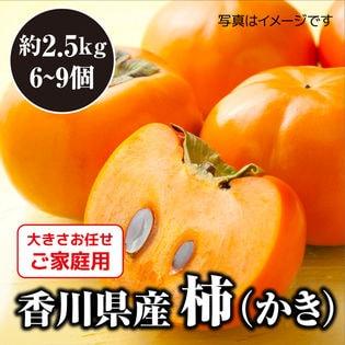 【予約】10/20~順次出荷 2箱同時申込で2kgおまけ【約2.5kg】香川県柿(ご家庭・不揃い)