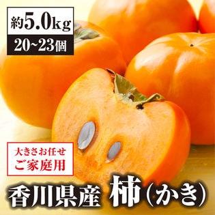 【予約】10/20~順次出荷 【約5.0kg】香川県産柿(ご家庭用・サイズ混合)