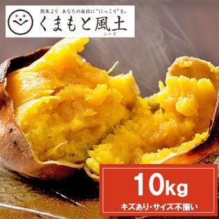 【予約受付】11/20~順次出荷【10kg】種子島産安納芋※家庭用(傷あり サイズ不揃い)