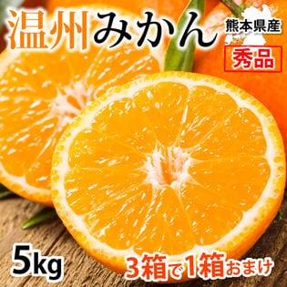 【予約受付】11/22~順次出荷【約5kg】 温州みかん 秀品 熊本県産