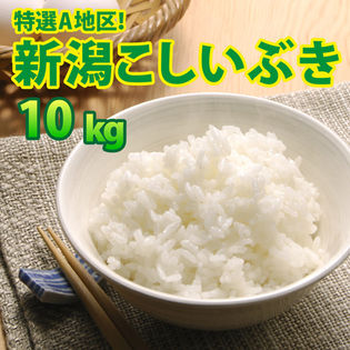【10kg (5kg×2袋)】令和3年産 新米 大人気 新潟県上越産こしいぶき