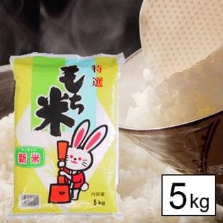 【5kg】 令和3年産 もち米 山形県産 ヒメノモチ 白米 5kgx1袋