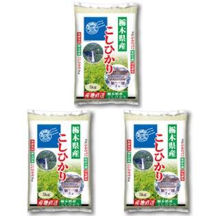 【計15kg(5kg×3袋)】令和3年産 栃木県産コシヒカリ