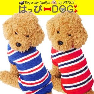 ドッグウェア ボーダー柄が可愛い新作セーターです