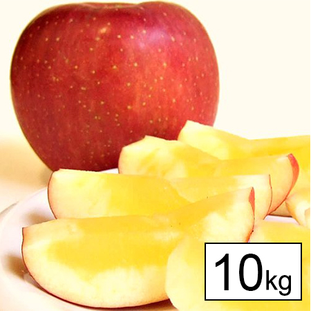 【10kg】[秀品]青森県産 サンふじりんご